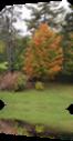 Vign_2012-09-26_002