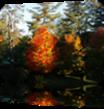 Vign_2012-10-02_002