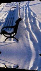 Vign_banc_public_dans_la_neige